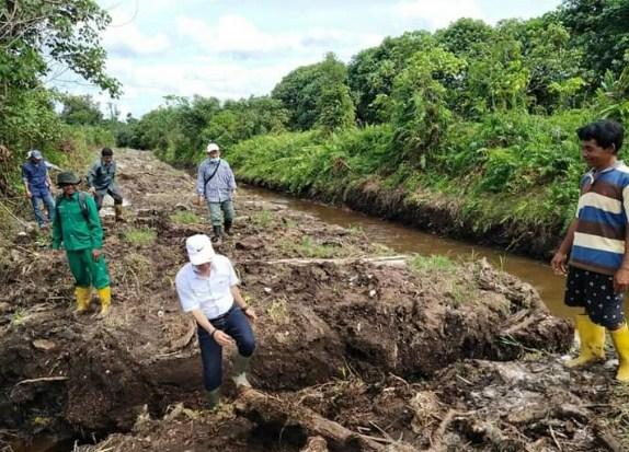 Plt Kadis Pertanian Sahmiludin saat meninjau kawasan pertanian di Kecamatan Teweh Selatan.