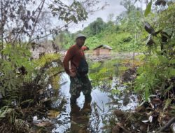 Lahan Kebun Milik Warga Benangin Tergenang, Diduga Adanya Aktifitas Tambang Batubara di Blok Lampanang
